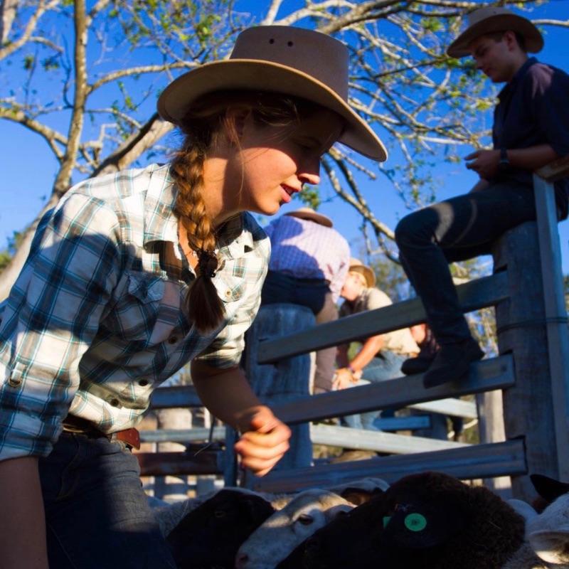 Boerderijwerk Australie