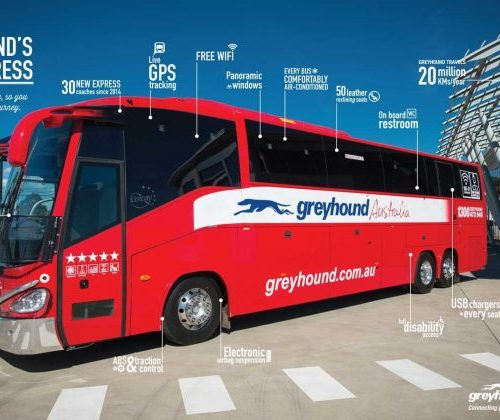 Greyhound Whimit buspas