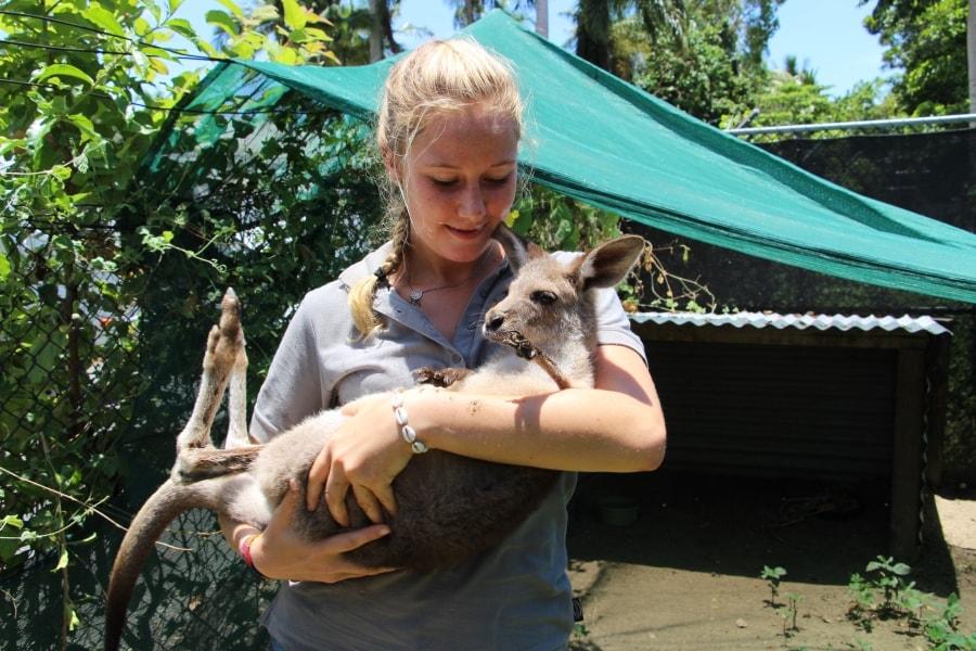 Vrijwilligerswerk - Werken met dieren in Australie