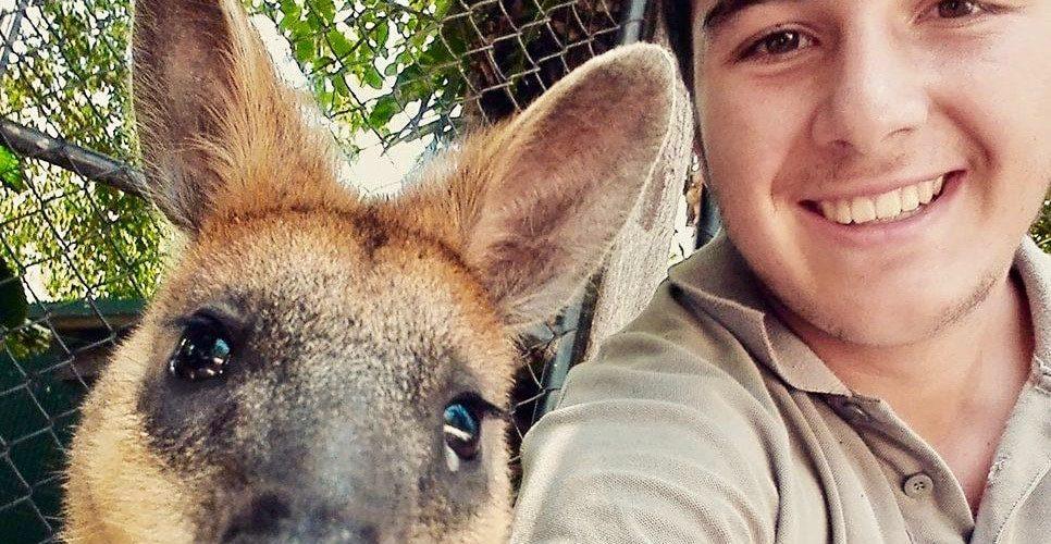 Vrijwilligerswerk in Australië - Werken met dieren in Australie