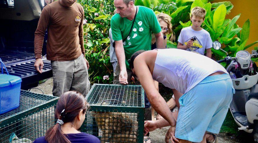 Wildlife Vrijwilligerswerk Thailand