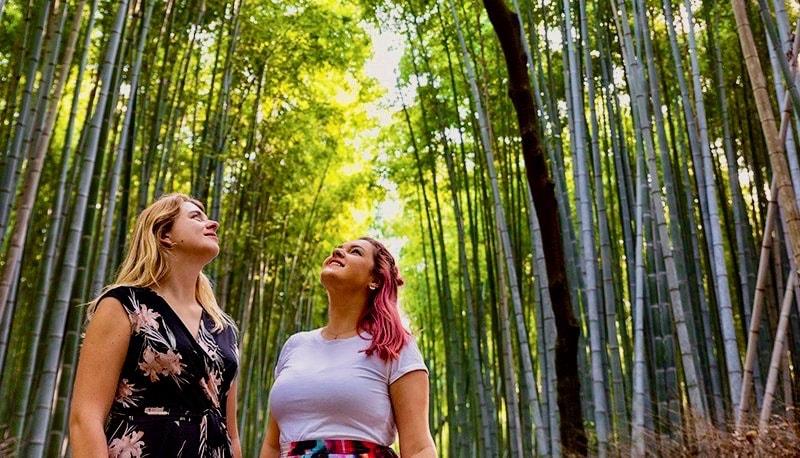 Meters hoge bamboe in het bos van Arashiyama tijdens de Japan Explorer Groepsreis