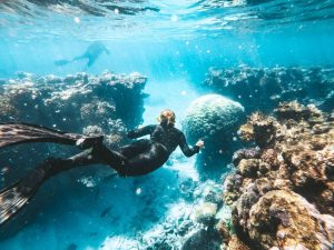 Snorkelen in de Great Barrier Reef