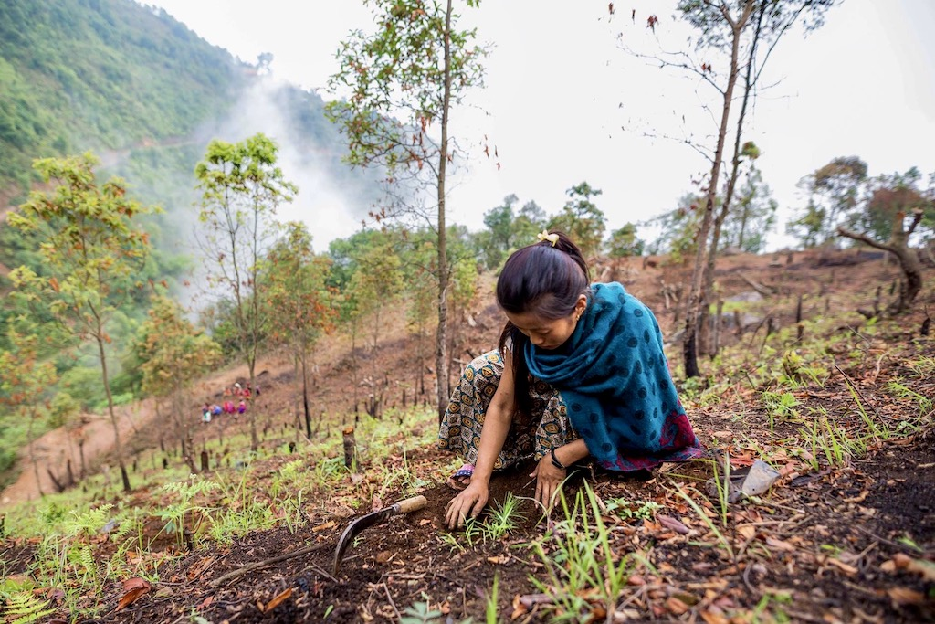 Samenwerken met Eden Reforestation Projects