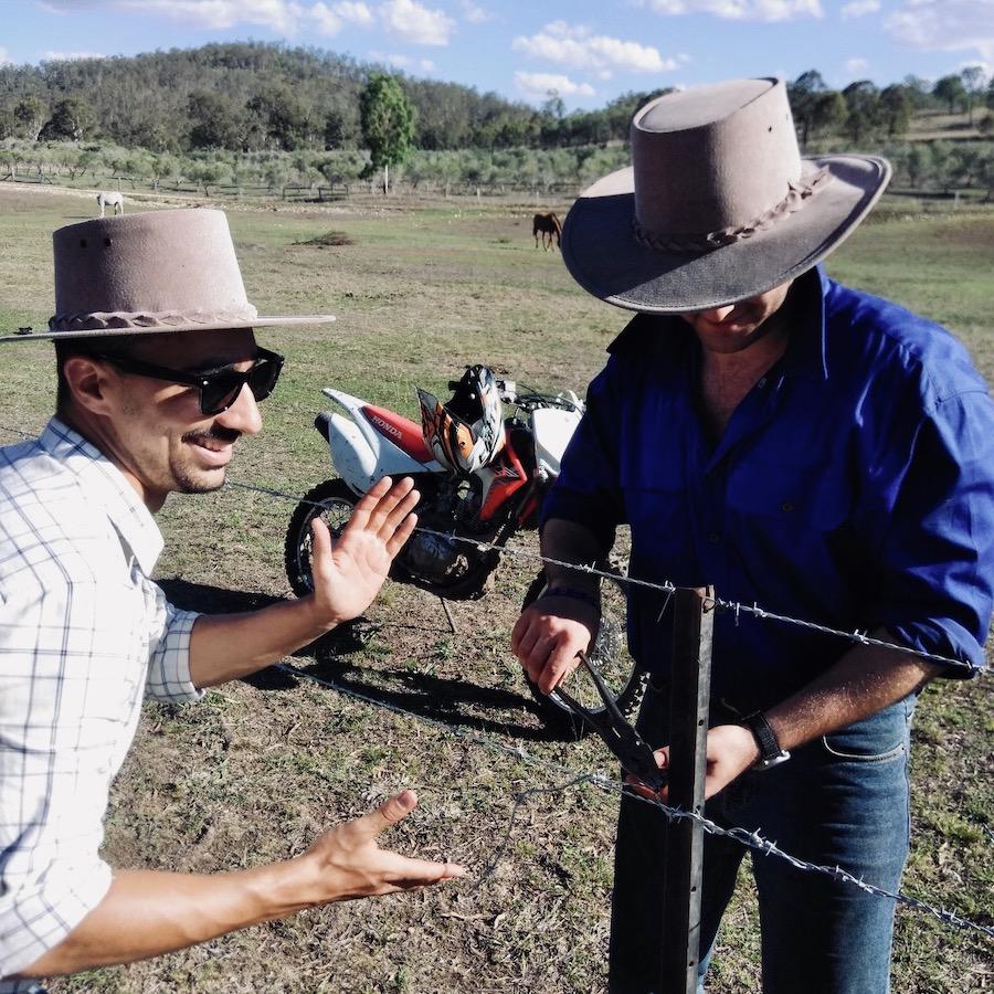 Hekken repareren met boerderijwerk in Australie
