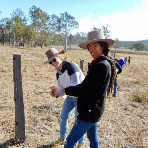 Hekken repareren tijdens het boerderijwerk in Australie