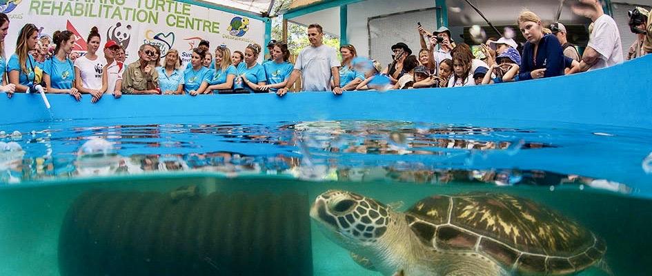 Introductie voor de vrijwilligers op het schildpadden project