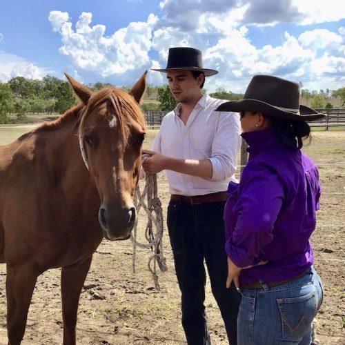 Leer alles over het paardrijden en werken met paarden