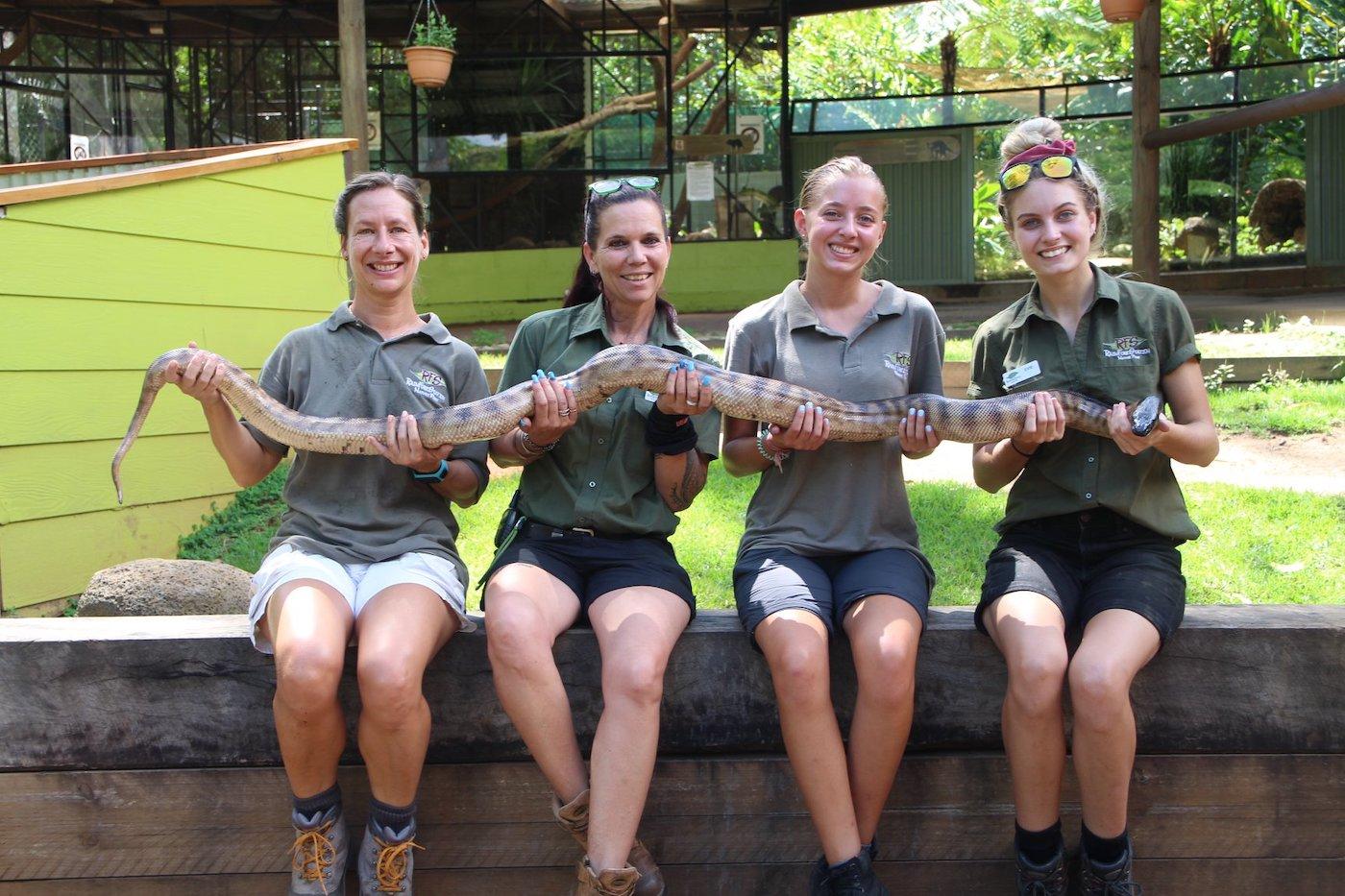 Slangen verzorgen in het Cairns Rainforest & Wildlife project