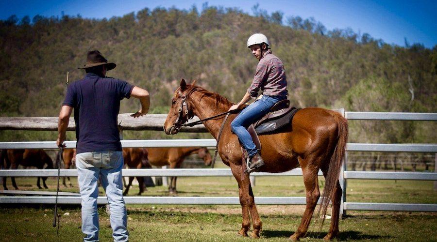 Werken met paarden in Australie in de praktijk brengen