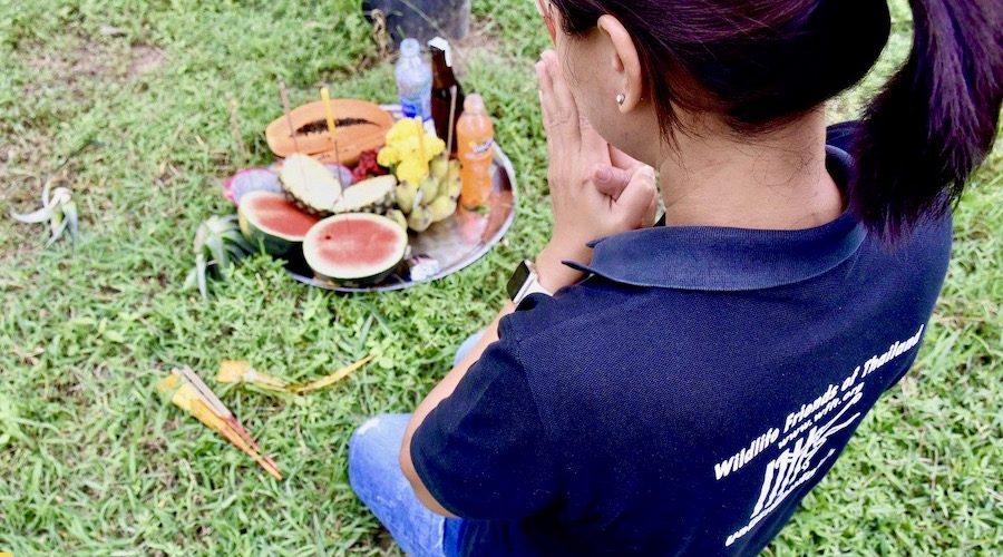 Offers in het vrijwilligerswerk opvangcentrum Thailand