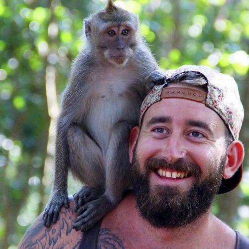 Ontmoet de apen in Bali