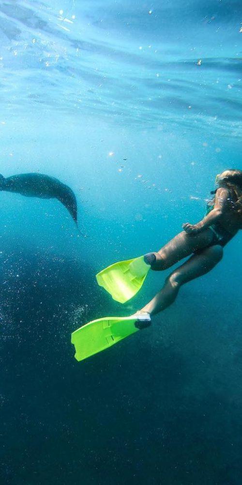 Snorkelen met roggen in Bali