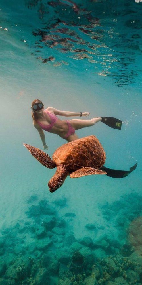 Zwemmen met schildpadden bij Gili Trawangan