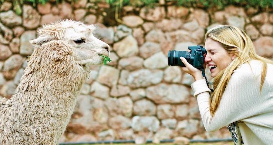 Ontmoet de alpaca's in Peru
