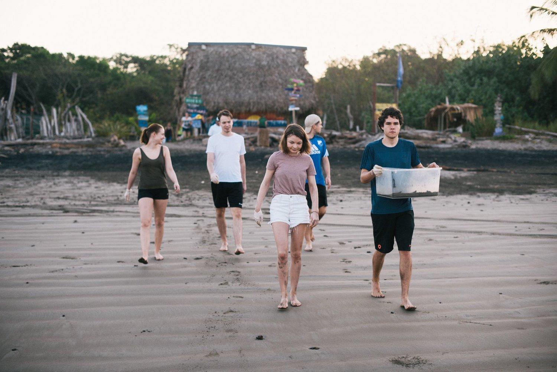 Schildpadden vrijwilligers op het strand