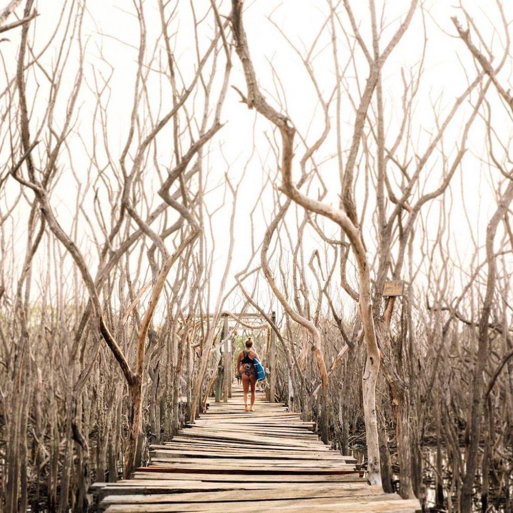 Wandeling naar het strand tijdens het Nicaragua Surfkamp