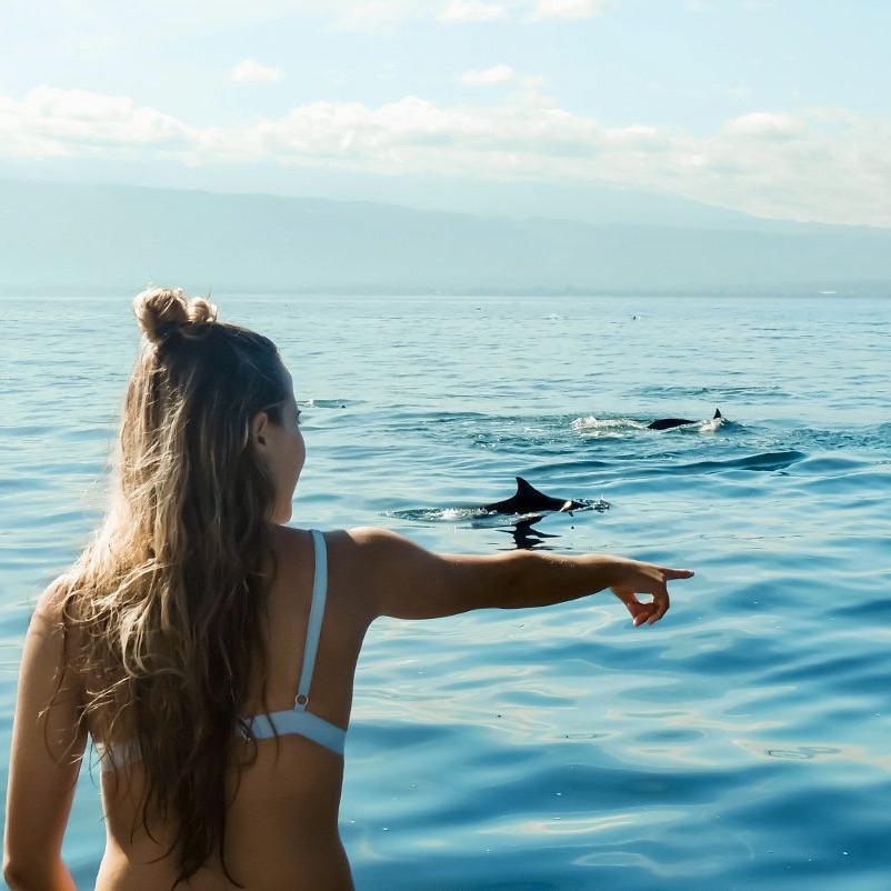 Dolfijnen spotten in Lovina met een Bali Premium Groepsreis