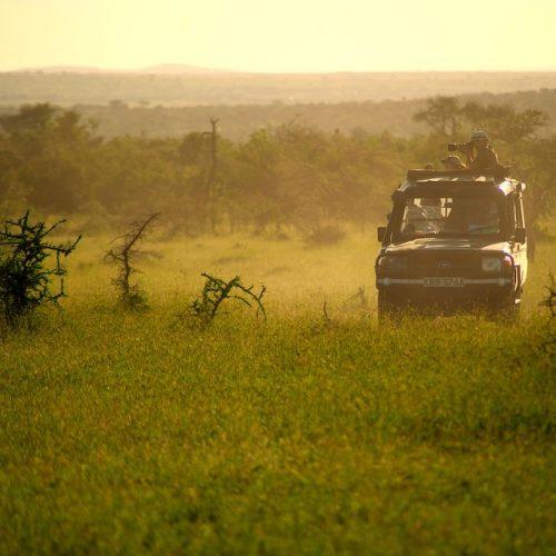 Fotograferen tijdens de zonsopgang van het Greater Kruger