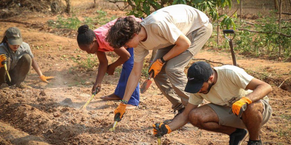 Help als vrijwilliger bij het project in Zuid-Afrika