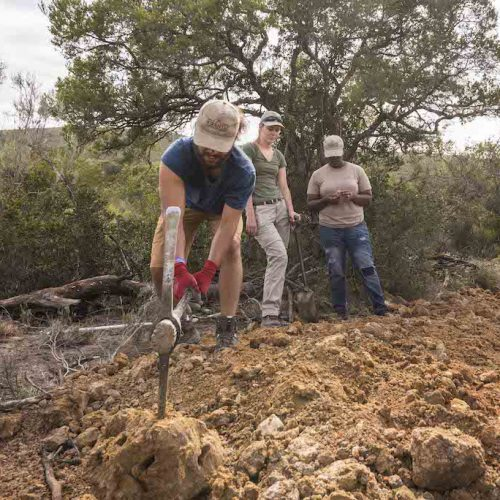 Het natuurgebied in Zuid-Afrika onderhoudenjpg