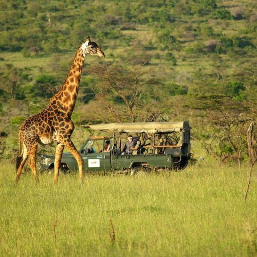 Masai Mara Natuurreservaat