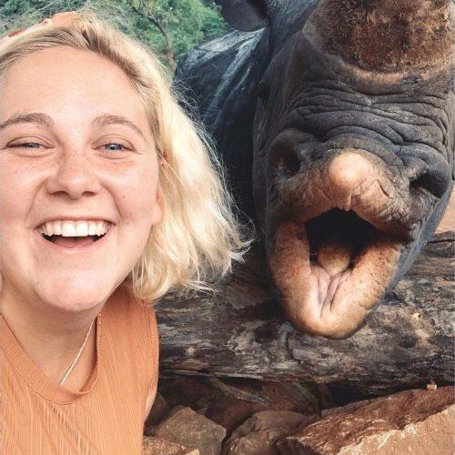 Neushoorn en Olifanten beschermen in Afrika