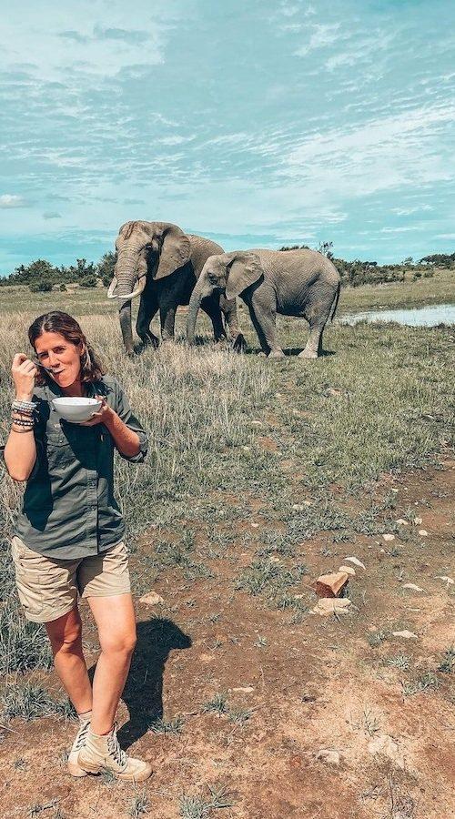 Ontbijten met de olifanten in Zimbabwe Afrika