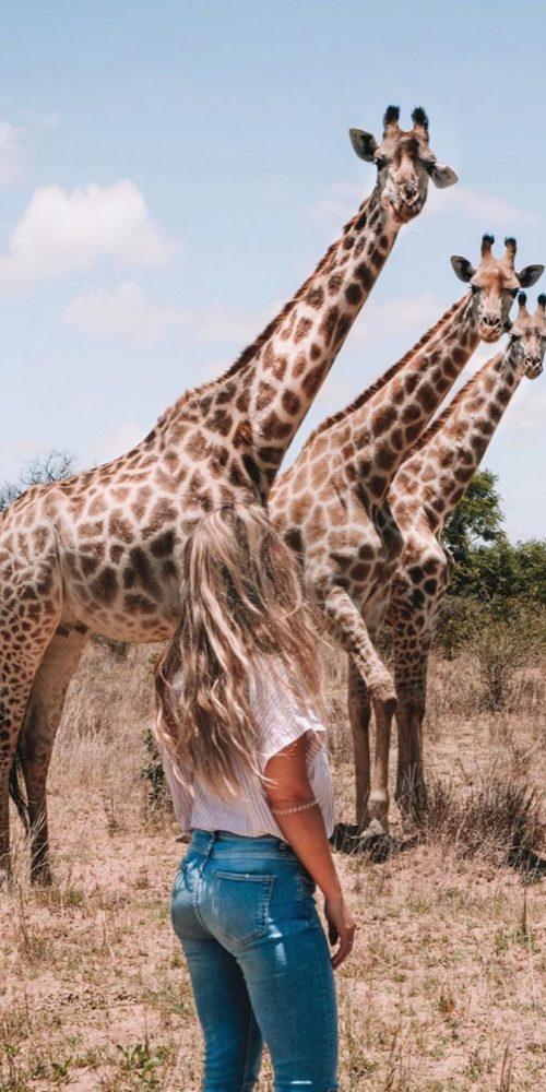 Ook giraffen op het vrijwilligerswerk project in Afrika