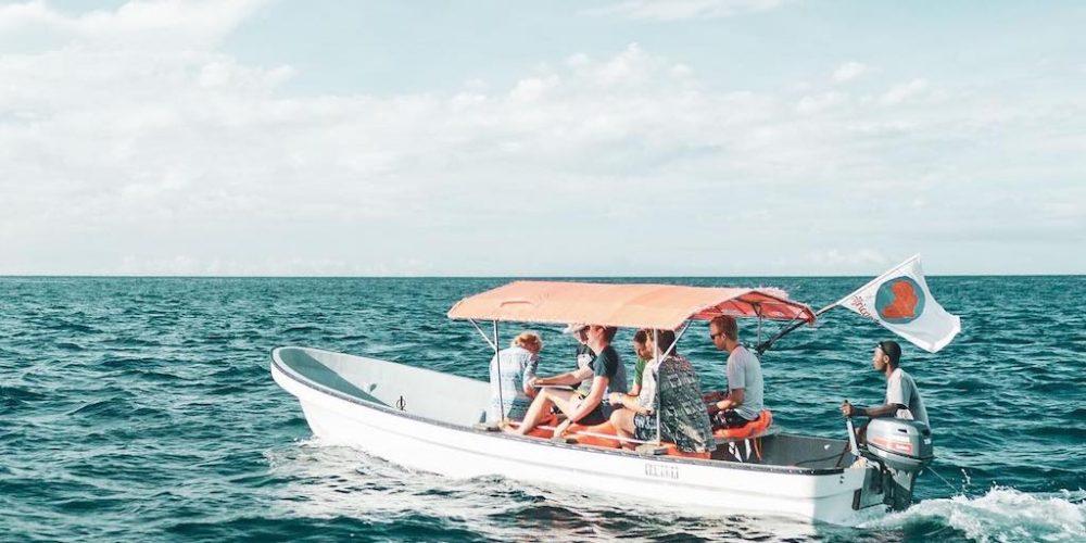 vanaf Jambiani Beach, Zanzibar dolfijnen spotten