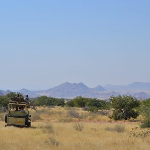 Namibie vrijwilligerswerk